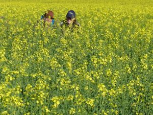 Portrait of mother and daughter in a field of canola